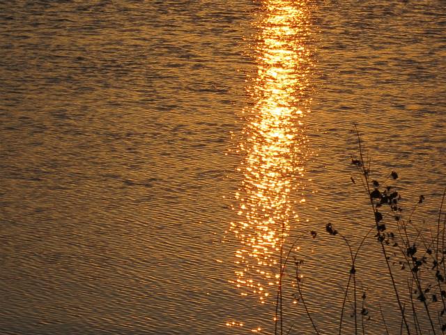 ≪ 愛知池の日の出を拝む ≫_a0357790_22013135.jpg