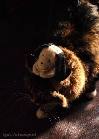 偽スヌーピーと猫 その2_b0253205_04554589.jpg