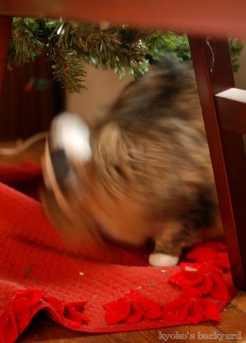 偽スヌーピーと猫 その2_b0253205_04560993.jpg
