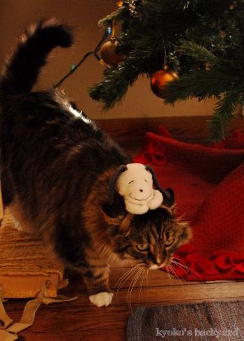 偽スヌーピーと猫 その2_b0253205_04562476.jpg