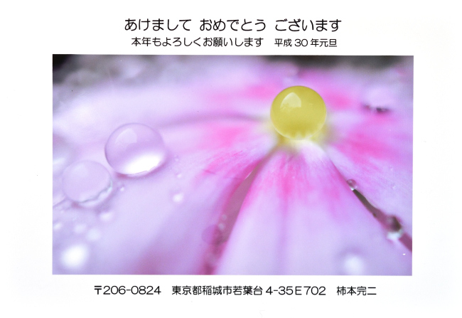 b0183370_13281449.jpg