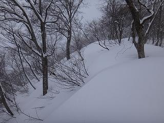 裏山で初日の出&湧谷山テレマーク_e0064783_18305569.jpg