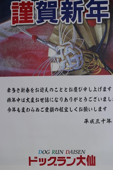 f0170713_6414019.jpg