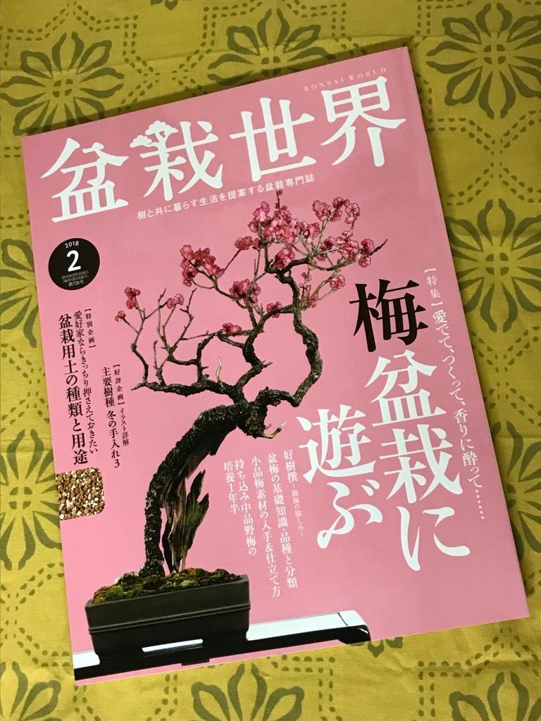 盆栽世界2月号_f0170915_10504020.jpg
