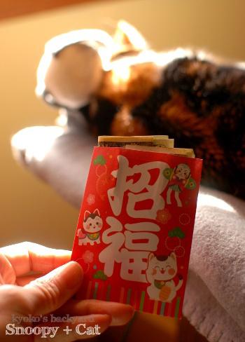 偽スヌーピーと猫 その4_b0253205_05542159.jpg