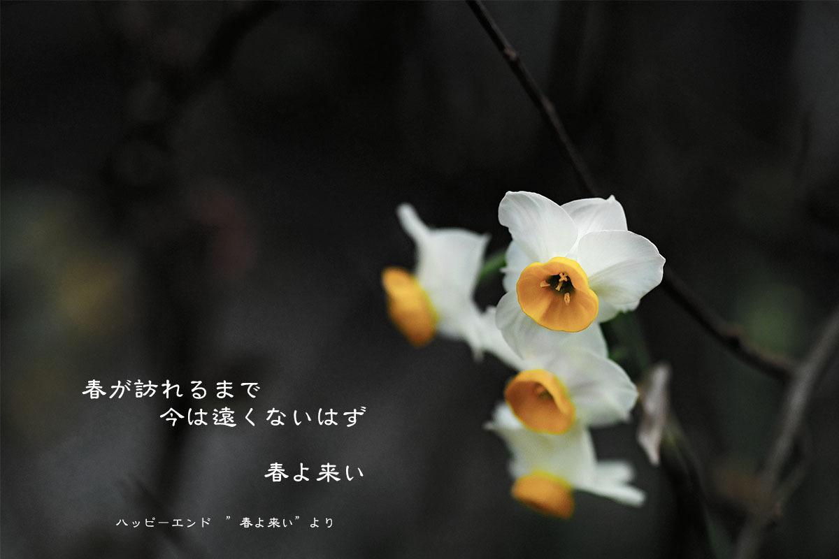 c0211429_23081810.jpg