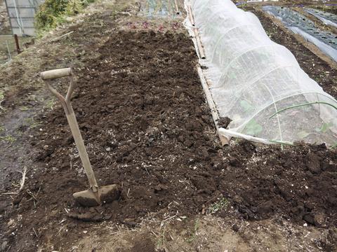 六国見山の畑の仕事始めは春キャベツ追肥と寒起こし1・5_c0014967_17451219.jpg