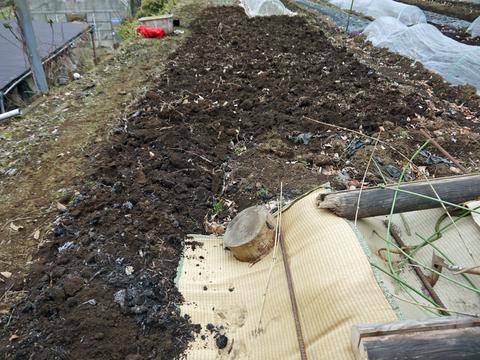 六国見山の畑の仕事始めは春キャベツ追肥と寒起こし1・5_c0014967_1745324.jpg