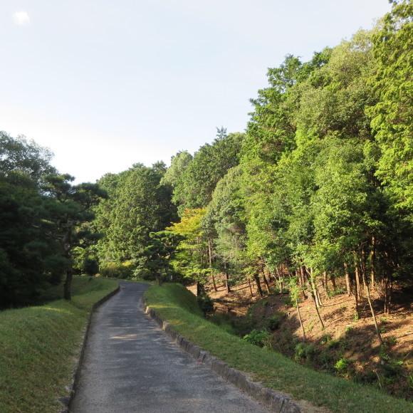 秋篠町から近鉄奈良駅方面に歩いて行く佐紀・佐保おさらいブログ 2 奈良市_c0001670_19143259.jpg