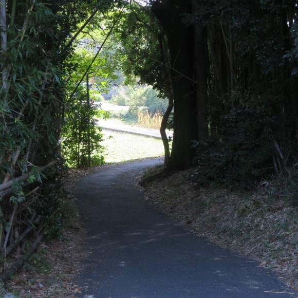 秋篠町から近鉄奈良駅方面に歩いて行く佐紀・佐保おさらいブログ 2 奈良市_c0001670_19151688.jpg