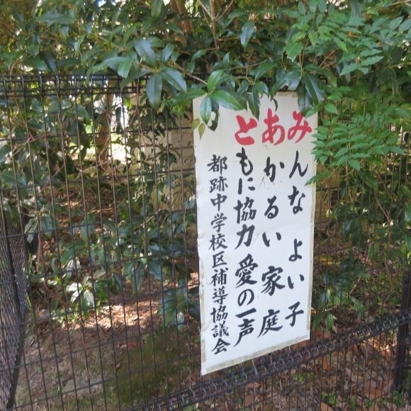 秋篠町から近鉄奈良駅方面に歩いて行く佐紀・佐保おさらいブログ 2 奈良市_c0001670_19213692.jpg