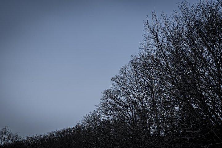 Winter Countryside_d0353489_18454413.jpg
