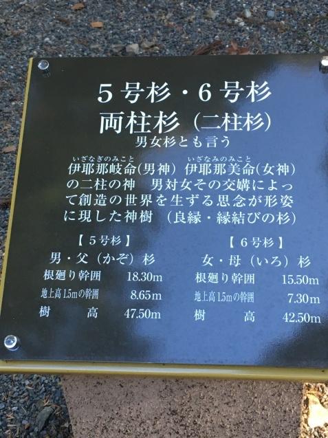 圧巻!富士山のパワーと縁結びの神樹_a0283796_17165832.jpg