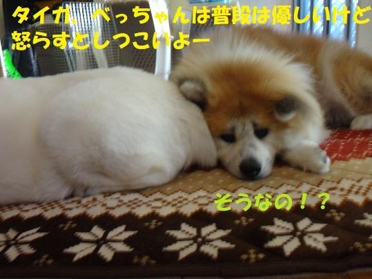 f0121712_01222861.jpg