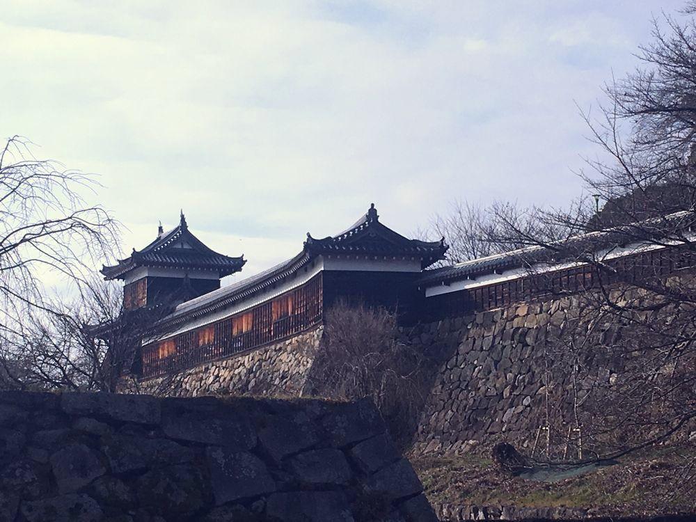 奈良で一番早い  植槻神社(大和郡山市植槻町)のオンダ_a0237937_22255997.jpg