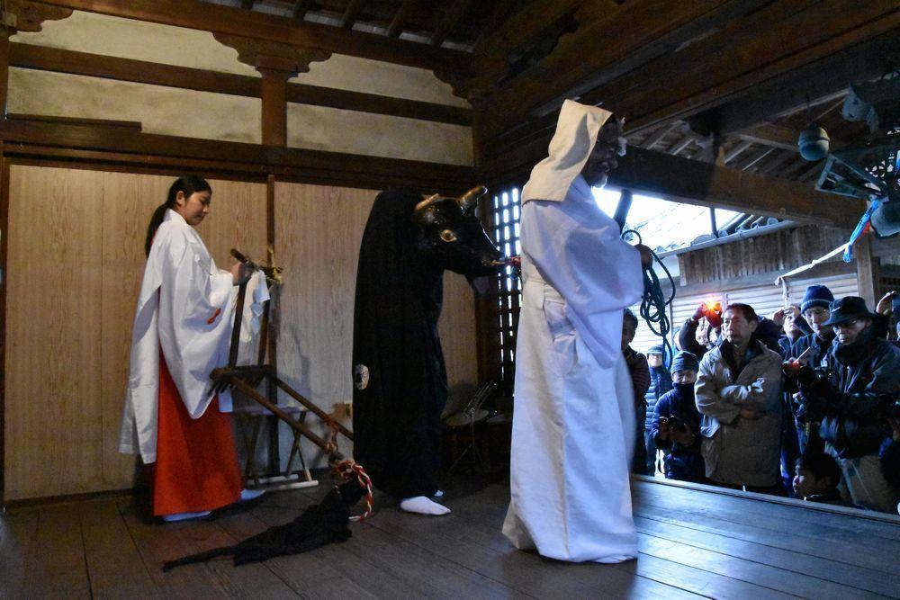 奈良で一番早い  植槻神社(大和郡山市植槻町)のオンダ_a0237937_22313225.jpg