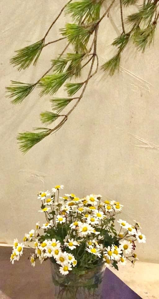 父が好きだった野菊の花・・・・_b0137969_22593711.jpg