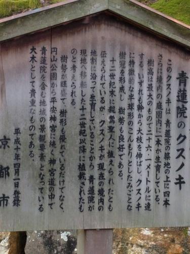 初ライドは京都で・・・_a0345079_06290107.jpg