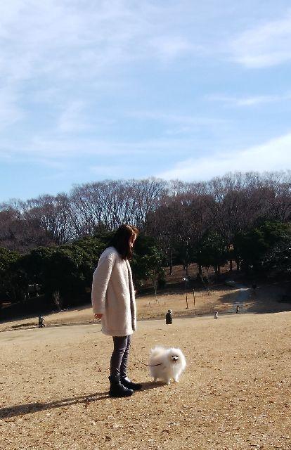 LATTEとお散歩@森林公園_e0169493_19464506.jpg