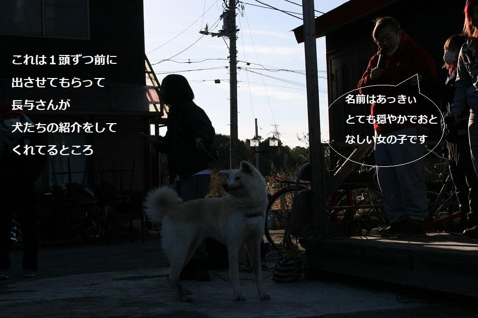 f0242002_18192040.jpg