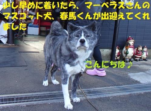 f0121712_20574740.jpg