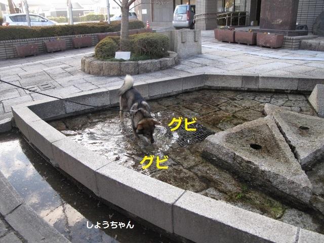 f0143123_14022463.jpg