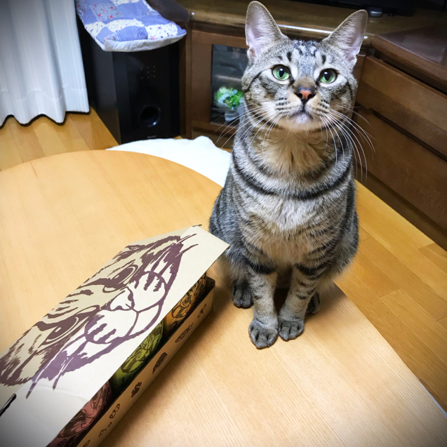 ツシマヤマネコ米の新パッケージ!_d0355333_21191991.jpg