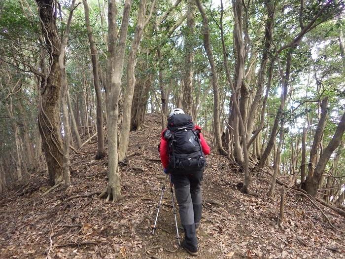 干支の山へ・・犬鳴山~西山_e0164643_21520335.jpg