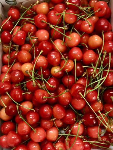月刊 Fruits Life No.64_a0347953_15551705.jpg