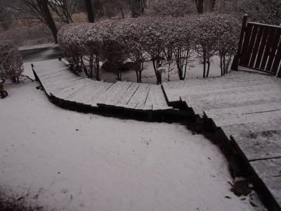 雪です_a0129867_1401937.jpg