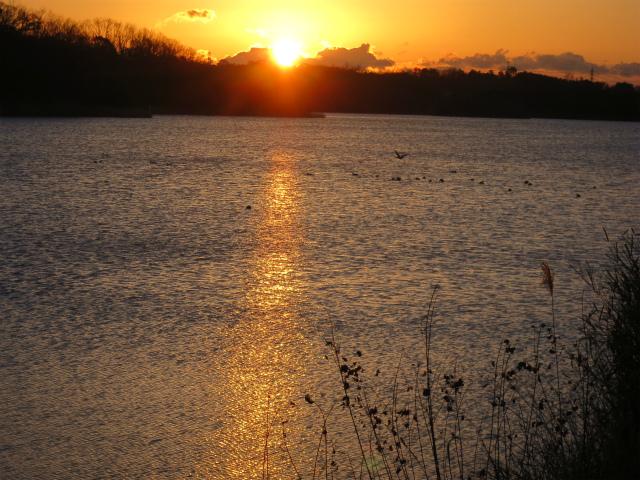 ≪ 愛知池の日の出を拝む ≫_a0357790_221478.jpg