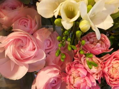 オークリーフ(初春の花)_f0049672_18035331.jpg