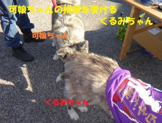 f0121712_15132437.jpg