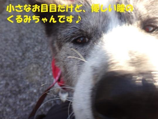 f0121712_15464935.jpg