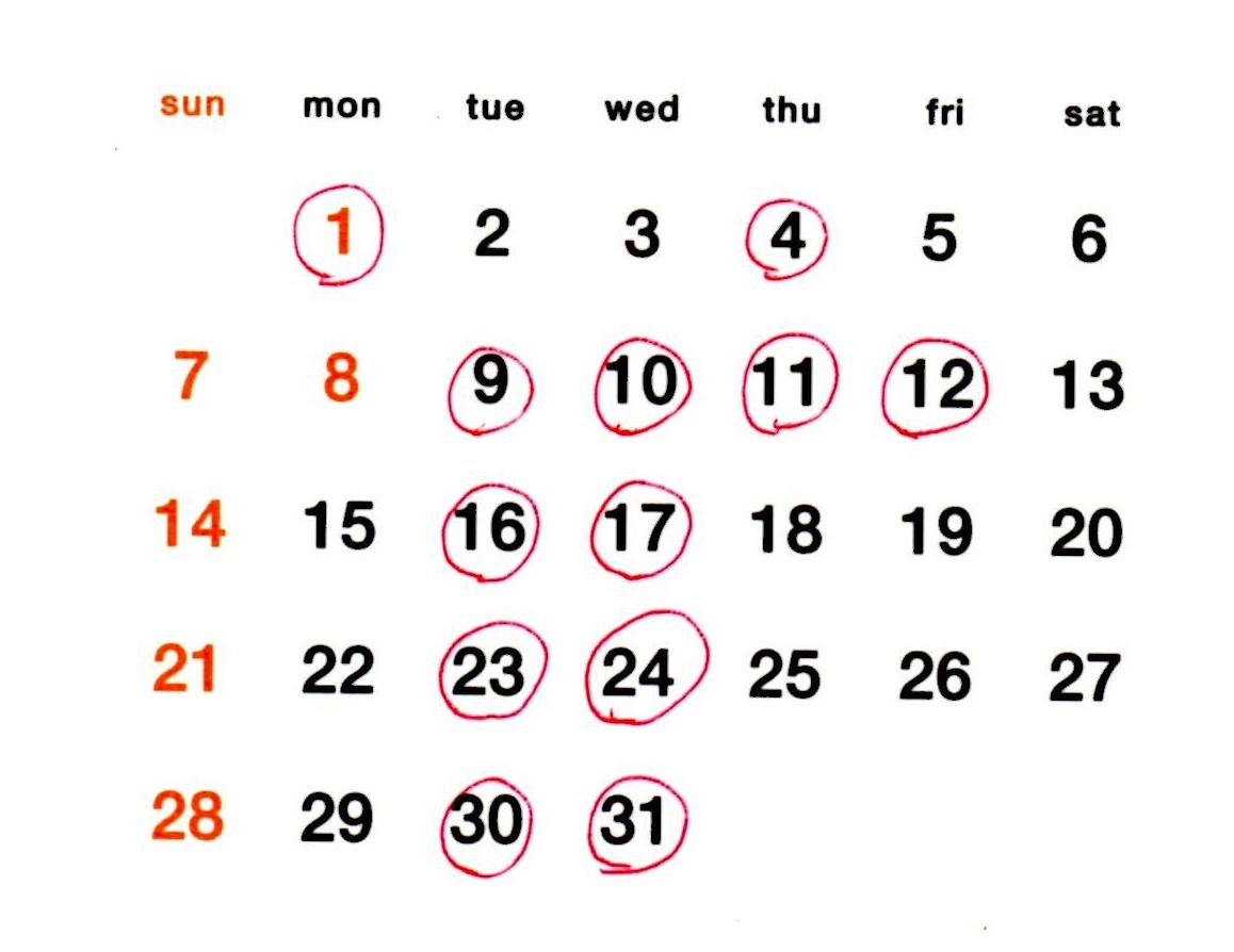 1月のスケジュール_a0265743_22315445.jpg