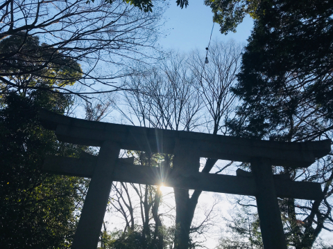 谷保天満宮お詣り_a0153945_08130080.jpg