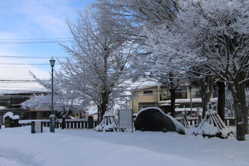 ~青春の詩碑~ 積雪の比較_c0075701_21595479.jpg