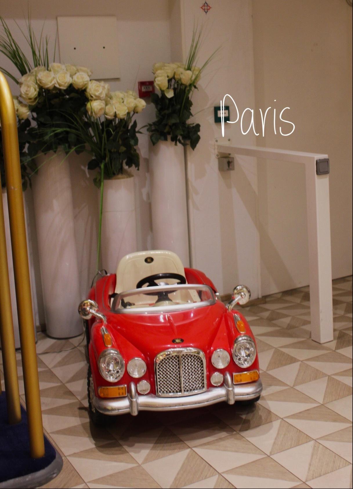 パリから無事帰って来ました〜⸜(* ॑꒳ ॑* )⸝_a0213806_16313388.jpeg