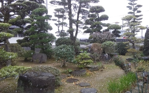 熊本でも降雪_e0184224_11272840.jpg