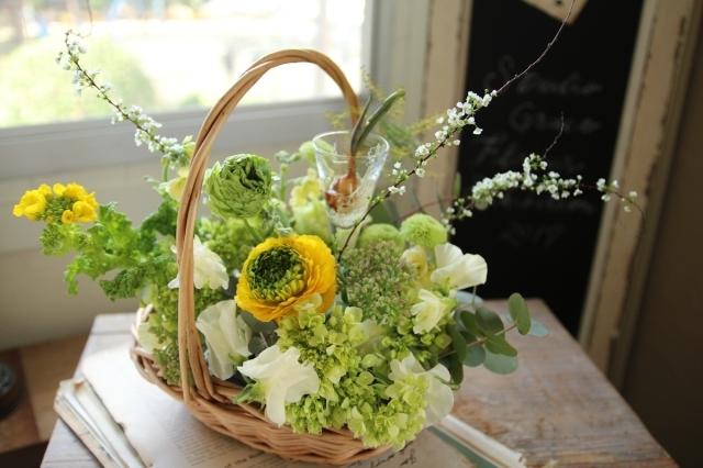 様々な春 1月レッスンスタートです!!_d0086634_18003783.jpg