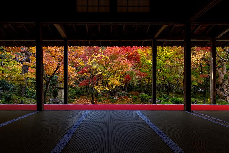 京都の紅葉2017 錦秋・圓光寺 - 花景色-K.W.C. PhotoBlog