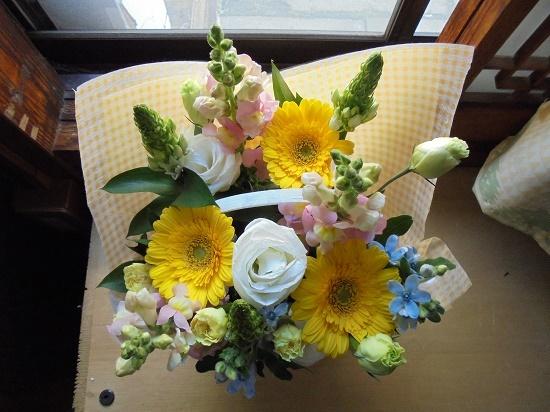 モナ先生とお花_a0064067_21565244.jpg