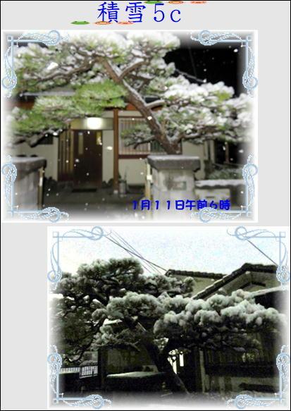 f0003174_13302473.jpg