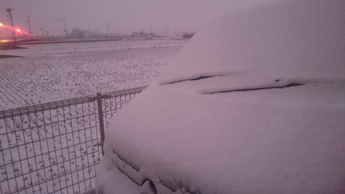 まるで雪国_f0172281_653212.jpg