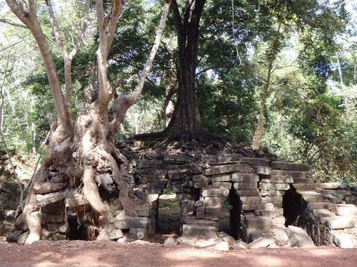 カンボジア~アンコール・ワット&タ・プローム_f0208315_14093732.jpg