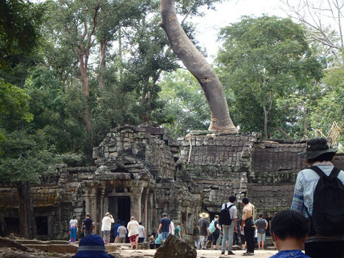 カンボジア~アンコール・ワット&タ・プローム_f0208315_14120276.jpg