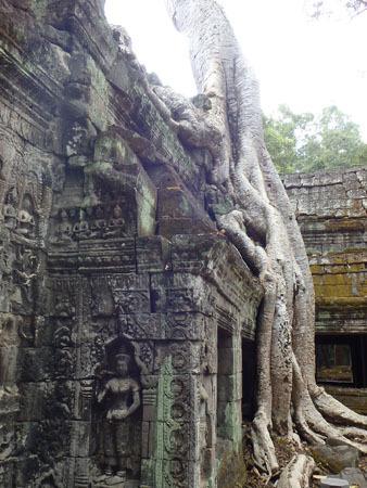 カンボジア~アンコール・ワット&タ・プローム_f0208315_14145072.jpg