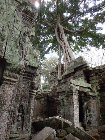 カンボジア~アンコール・ワット&タ・プローム_f0208315_15000369.jpg