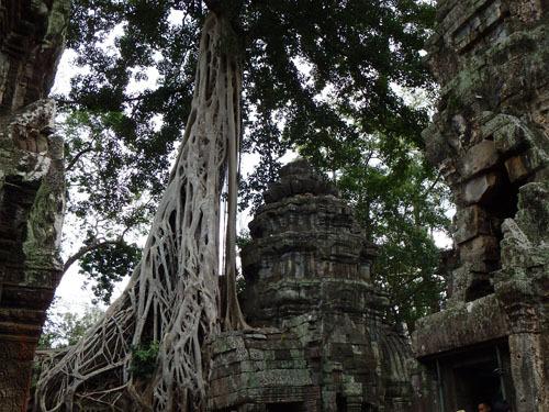 カンボジア~アンコール・ワット&タ・プローム_f0208315_15001798.jpg