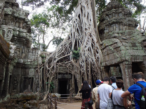 カンボジア~アンコール・ワット&タ・プローム_f0208315_15003476.jpg
